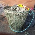伝統的な籠(ドコ)